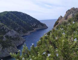 escursioni-gorgona
