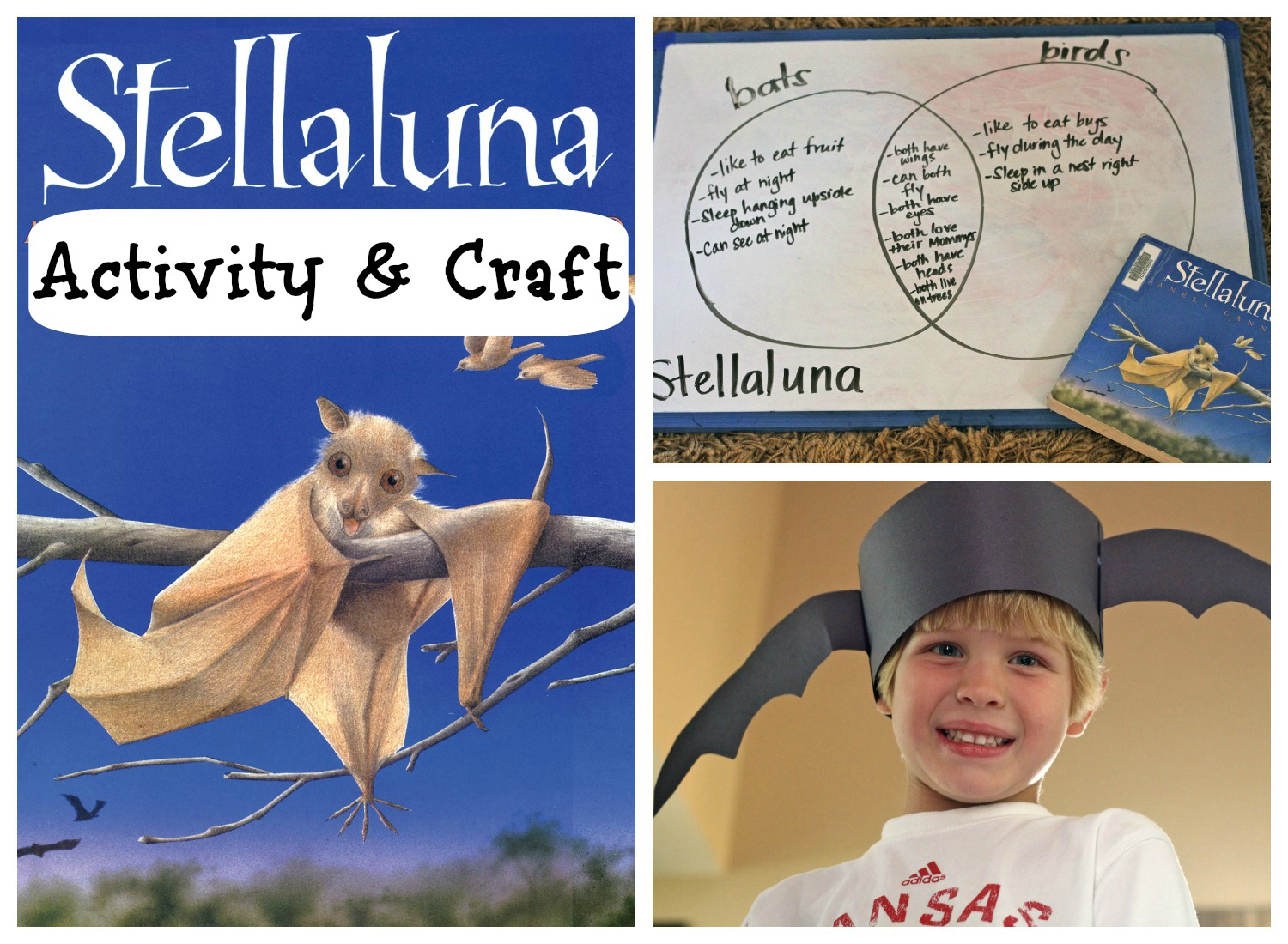 Stellaluna Activity Amp Craft