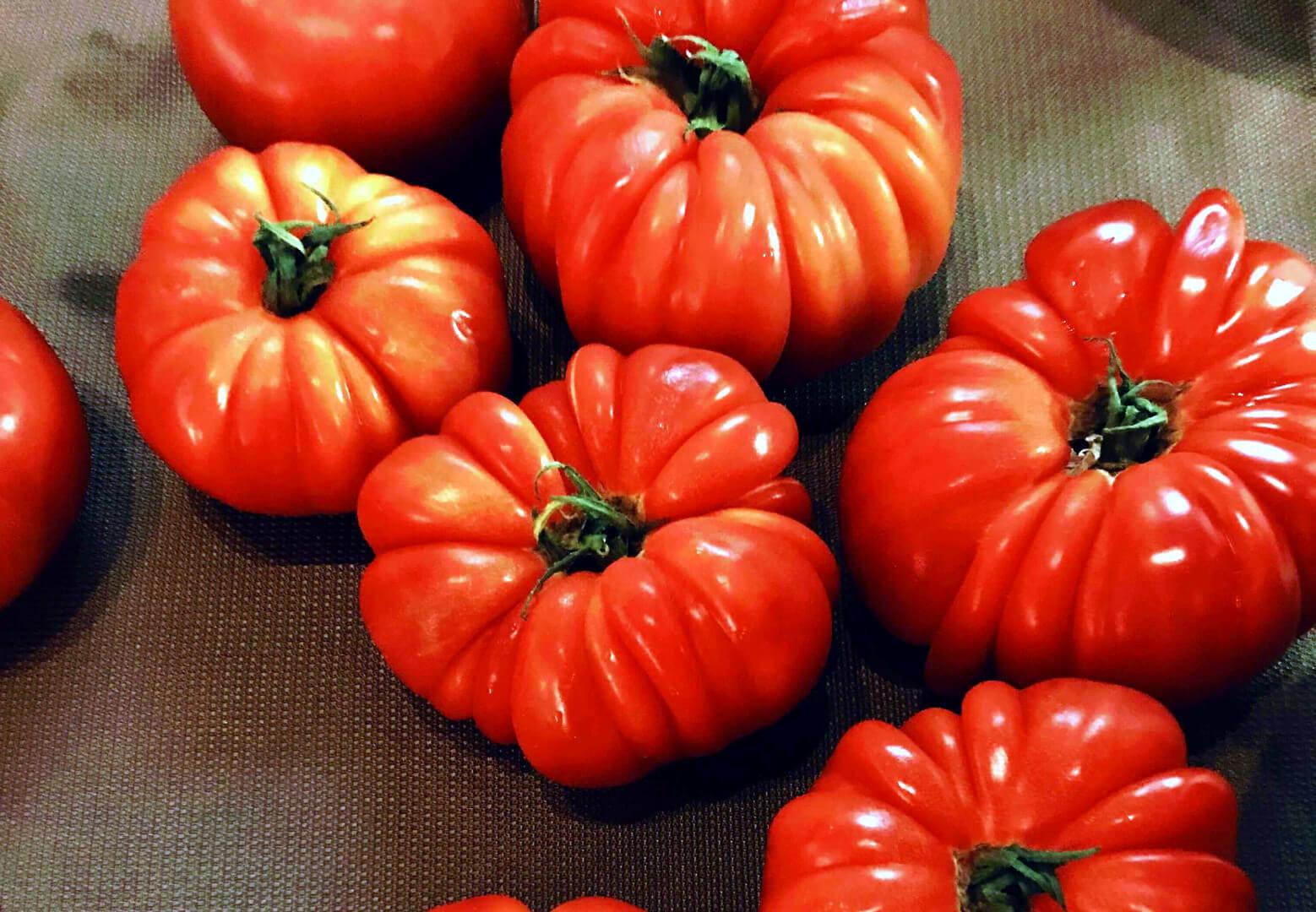 EVOO Masterclass Tomatoes