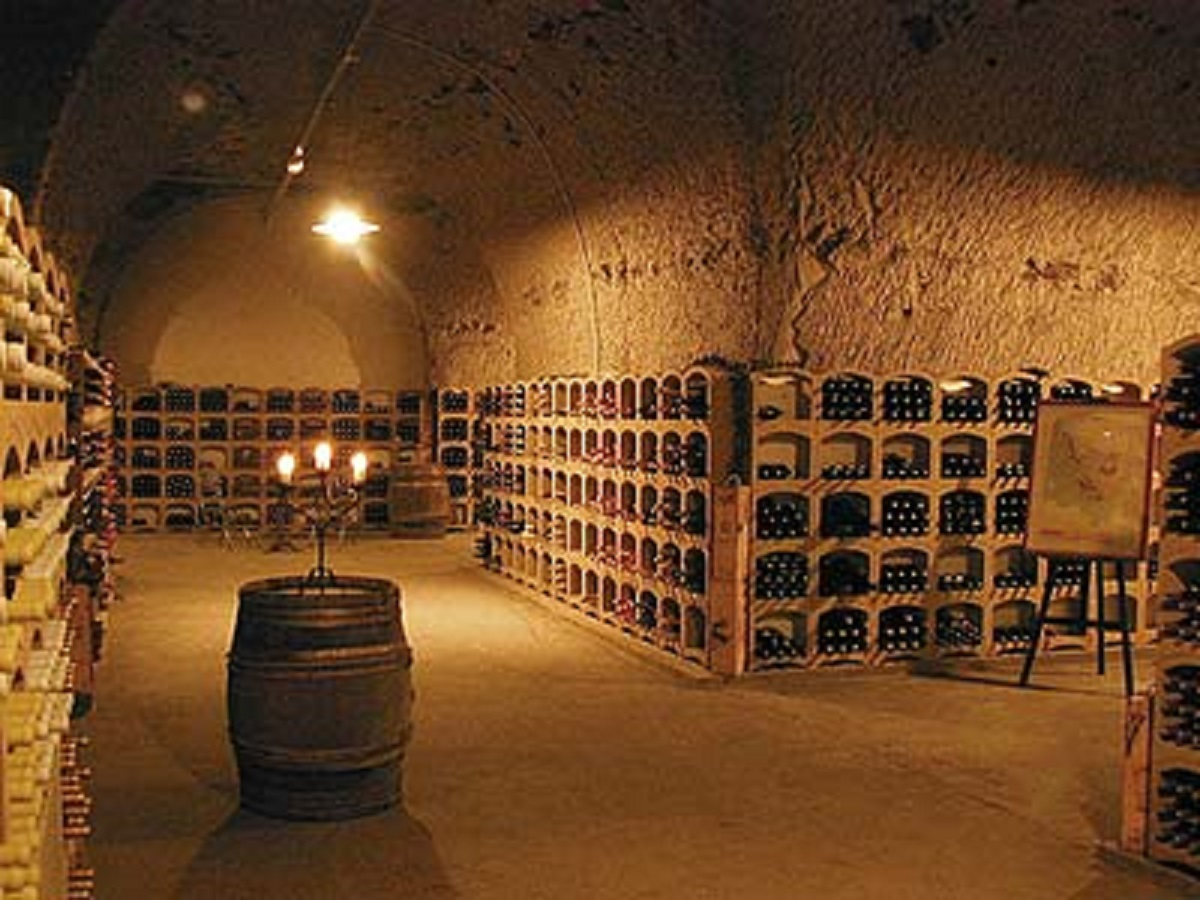 Ice Shop Comment Choisir La Meilleure Cave Vin
