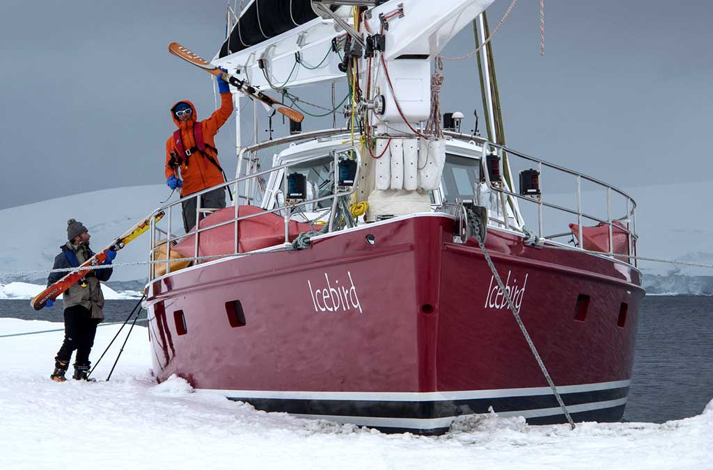 icebird expeditions