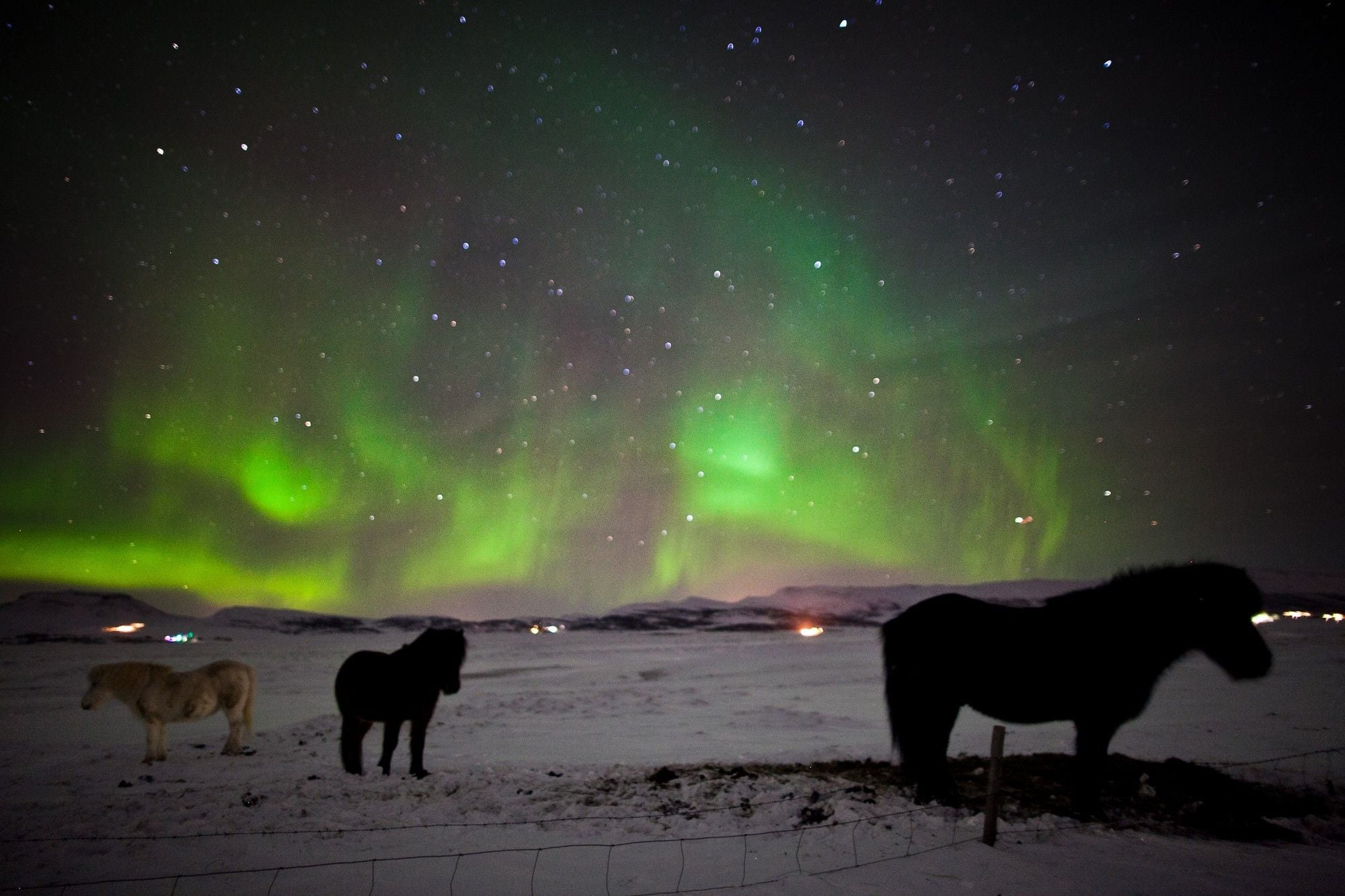 Northern Lights Norway Holiday