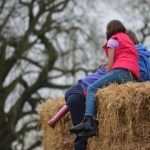 'Farm work is not child's play', warns top health and safety watchdog