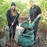 Fairhaven Gardening Team Embarks on Annual Leaf Collection and Recycling Project