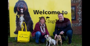 DOGS TRUST SNETTERTON REHOME 100TH DOG TO COUPLE READY TO LOVE AGAIN