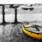 Norfolk based photographer steps into the light