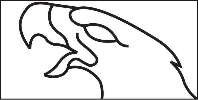 Eagle Head Template