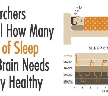 Researchers-Reveal-How-Many-Hours-of-Sleep-your-Brain-Needs-to-Stay-Healthy-1024x576