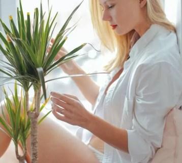 argan-oil-skin-hair-nails.jpg