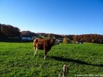 Herbstouren_Tag2- (15 von 17)
