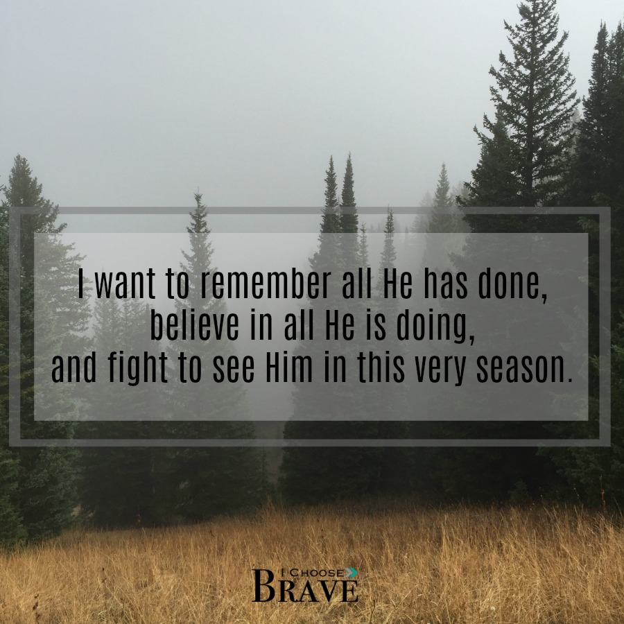 Fight to see Him in this season. #GivemeJesus #Biblestudy
