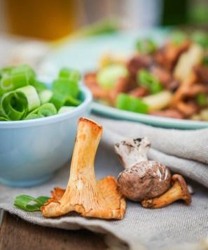 Pilzrezept für einen herbstlichen besonderen Nudelsalat mit Pfifferlingen und Frühlingszwiebeln. Frisch und mit einen Hauch vom Herbst. Das Rezept findet ihr auf dem Blog | ichsowirso.de