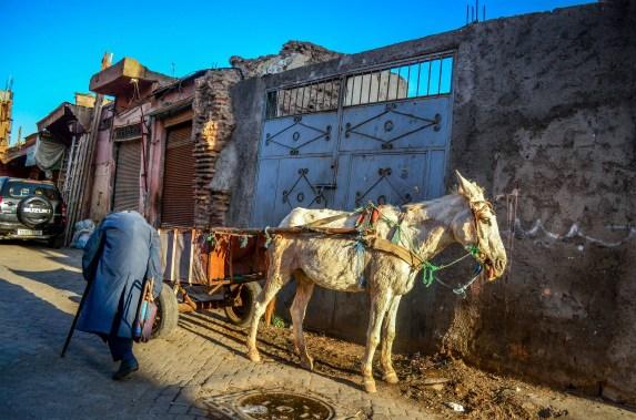 Le tour des remparts à Calèche Maroc Blog voyage