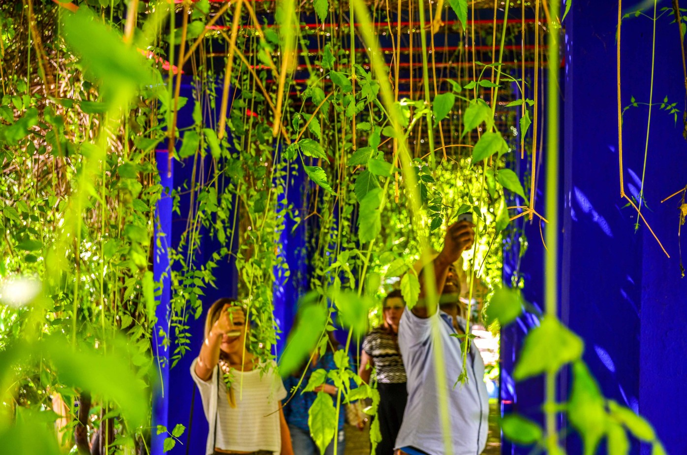 Marrakech Jardin Majorelle BleuMajorelle Bleu Mémorial Yves Saint Laurent blog blogvoyage voyage icietlabas