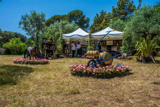 Randonnée Provence Alpes Cote d'Azur Blog voyage