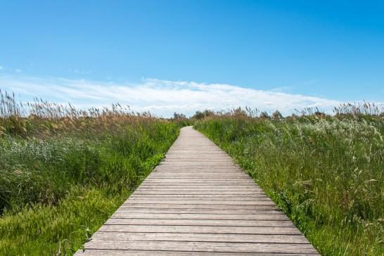 Aigues-Mortes blog de voyage