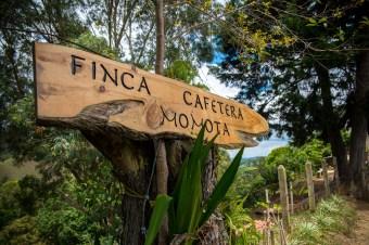 Finca Momota Cafetera Saleto Colombie Blog Voyage-24