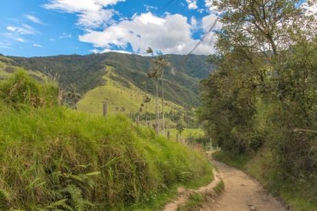 Cocora Salento Colombie Blog Voyage