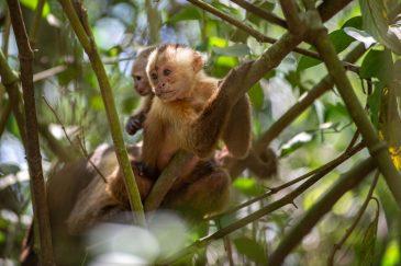 Tayrona National Parc Trois semaine en Colombie Blog Voyage