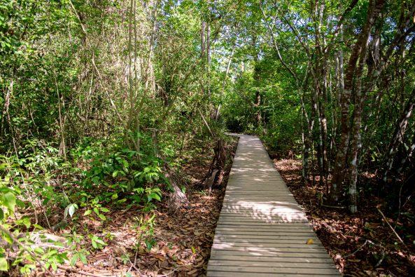 Tayrona National Parc Trois semaine en Colombie Blog Voyage-11