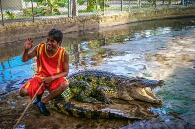 Koh Samui Thaïlande Blog Voyage