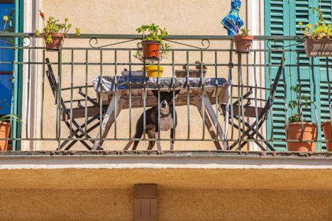 Collobrières département du Var Provence Alpes Côte d'Azur Paca blog voyage-51