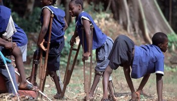 Image result for New Polio Virus, CPV, hits Kano