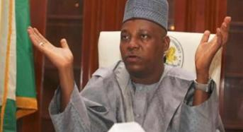 Kidnapped Girls: Only 30 Students Have Been Found – Borno Govt