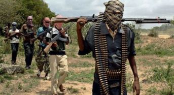 Nigeria Troops Lay Ambush For Insurgents, Kill Scores