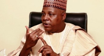 """Borno Slams TheCable For """"Misleading"""" And """"Malicious"""" Story"""