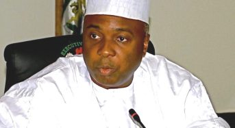"""Senate Flays SGF For Describing Corruption Allegation """"Rubbish"""""""