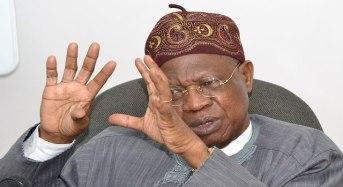 FLASHBACK: In 2013, Lai criticised Jonathan for designating Boko Haram a 'terrorist group'