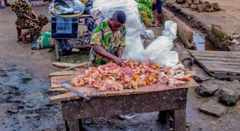 Unhealthy abattoirs in Nigeria – recommendations and solutions