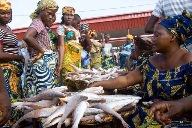NIGERIA: Importing fish amidst abundant ocean resources, the paradox of a nation