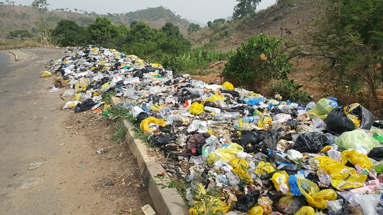 Refuse dump along Lower Usman Dam, Bwari                     Photo Credit: Olugbenga Adanikin The ICIR