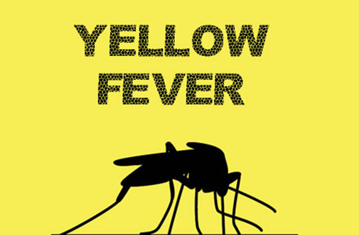 Nigeria yellow fever cards