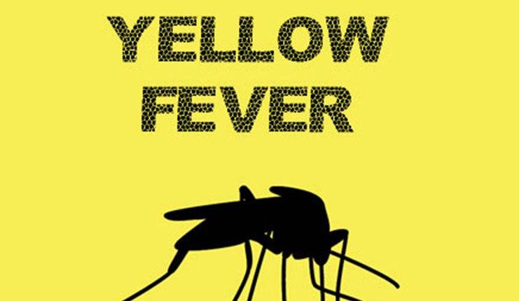 Nigeria yellow fever cards