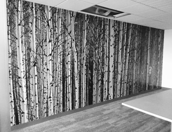 Black & White Custom Wall Coverings by ICL Imaging