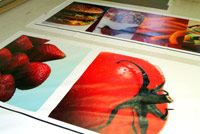 Fabric Dye Sublimation printed by ICL Imaging, Large Format Printers near Boston, MA