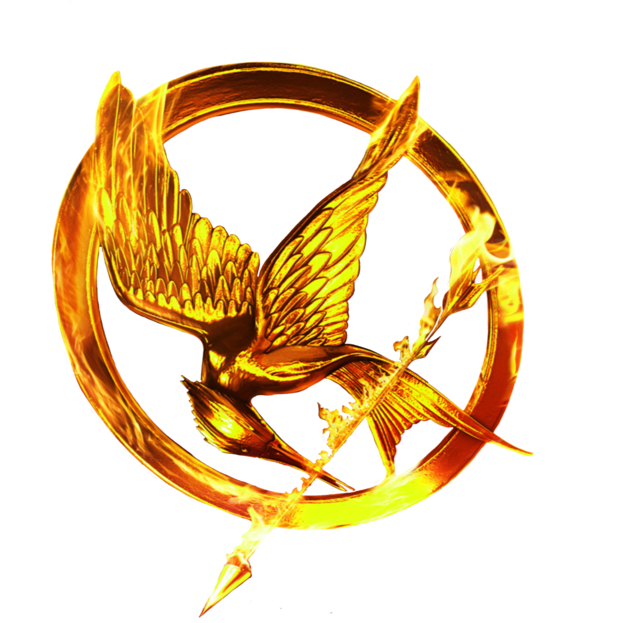 Hunger Games Catching Fire Background Hd