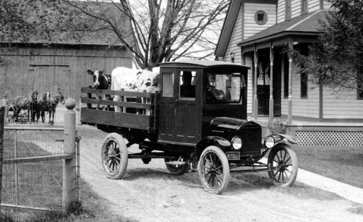 Ford T, modificado para transportar ganado vacuno