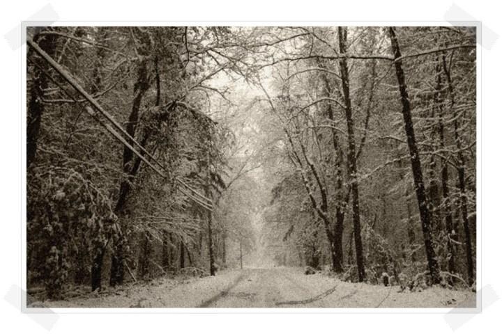 Las tres hermanas - Carretera bosque nieve