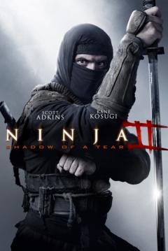'Ninja 2: Shadow of a Tear'