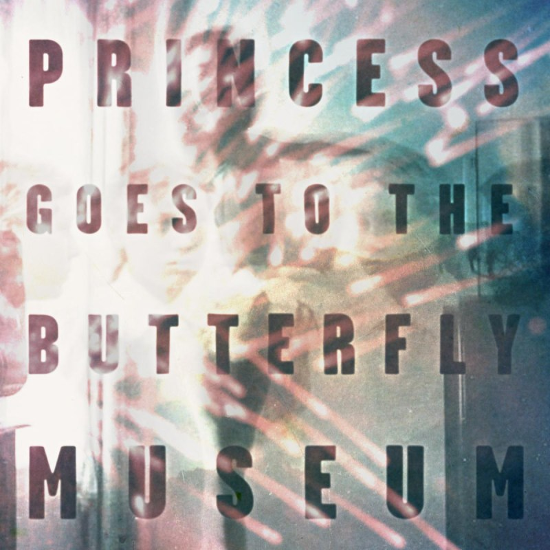 Princess Butterfly Goes To The Museum