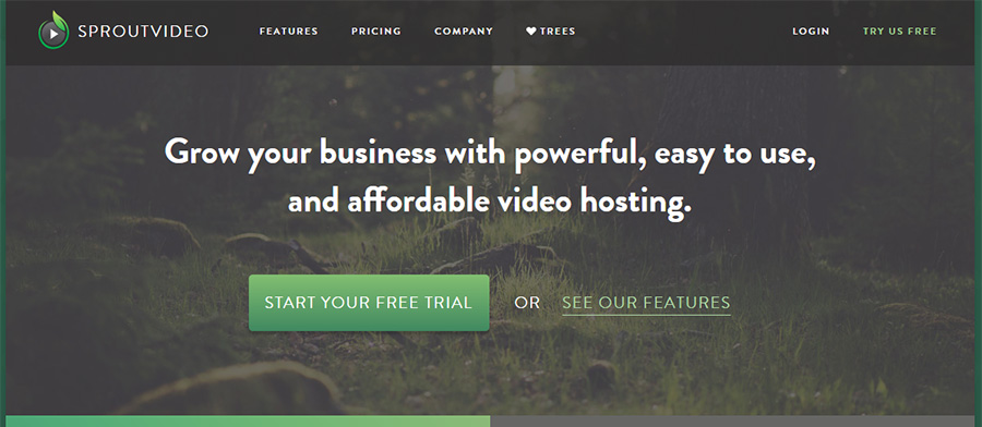 Top 5 Best Video Hosting For Your Business