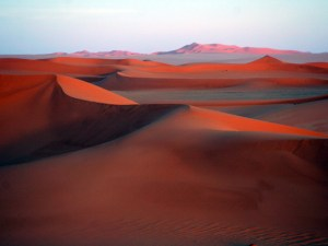 Ливийская Сахара. Сокровища мировой культуры.