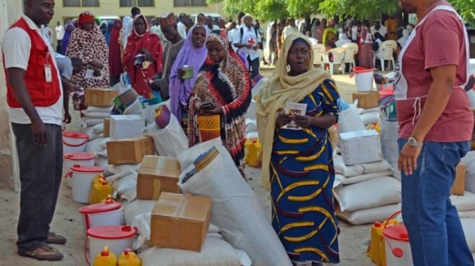 Lake Chad crisis: ICRC steps up response
