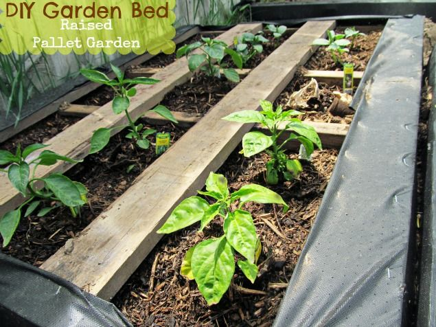 Raised Planter Box Materials