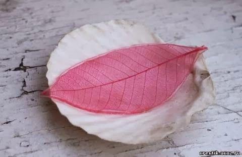 DIY-Colorful-Skeleton-Leaves-9.jpg
