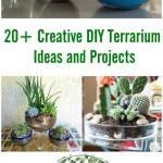 20 Creative Diy Terrarium Ideas And Projects I Creative Ideas